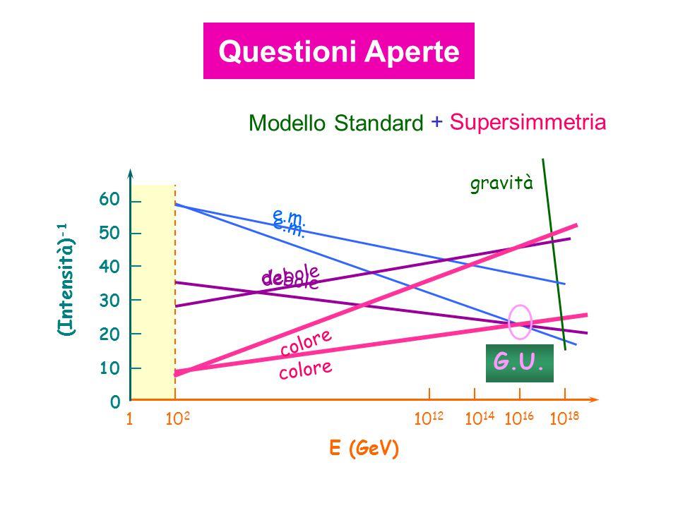 Modello Standard + Supersimmetria E (GeV) 10 2 10 12 10 14 10 16 10 18 1 0 (Intensità) -1 10 50 20 30 40 60 e.m. debole colore gravità G.U. e.m. debol