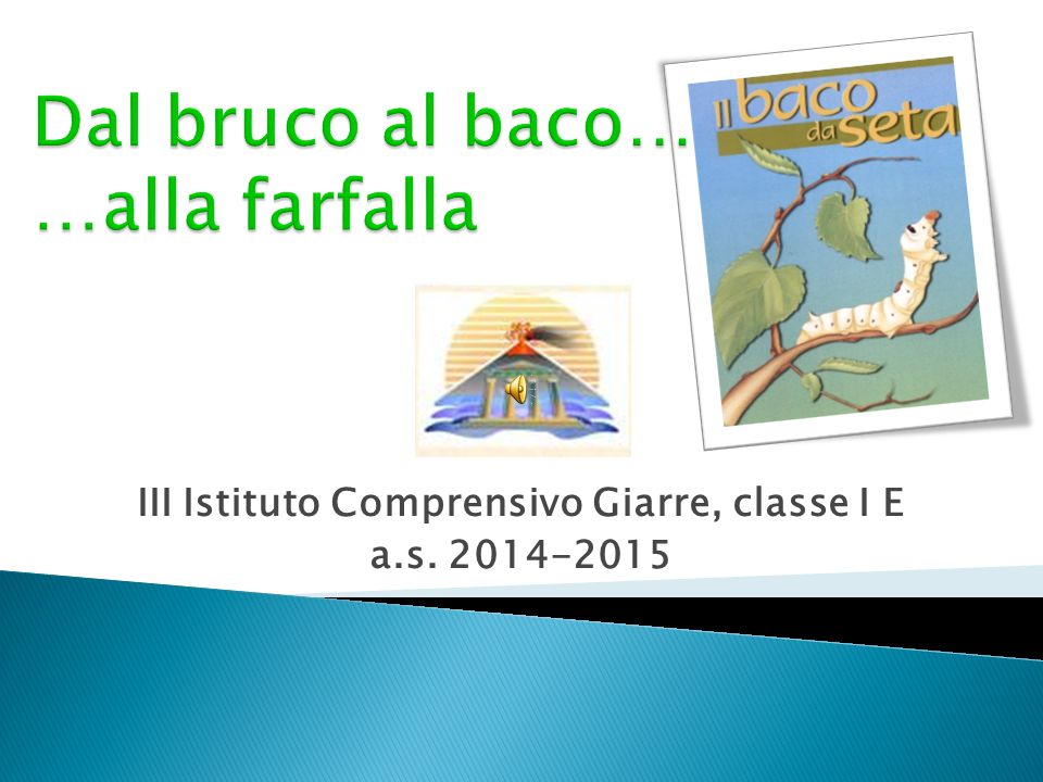 III Istituto Comprensivo Giarre, classe I E a.s. 2014-2015