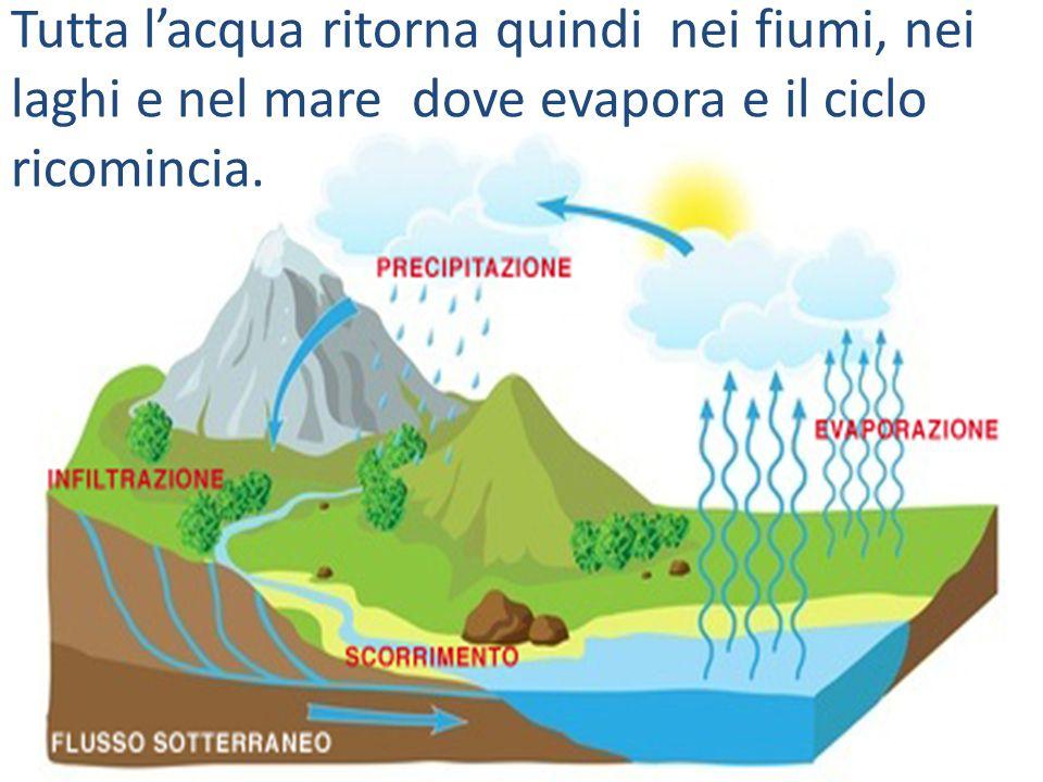 Tutta l'acqua ritorna quindi nei fiumi, nei laghi e nel mare dove evapora e il ciclo ricomincia.