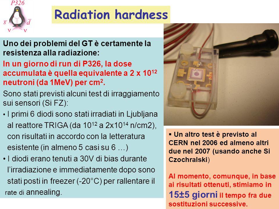Uno dei problemi del GT è certamente la resistenza alla radiazione: In un giorno di run di P326, la dose accumulata è quella equivalente a 2 x 10 12 neutroni (da 1MeV) per cm 2.