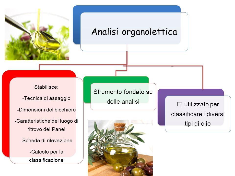 Analisi organolettica Stabilisce: -Tecnica di assaggio -Dimensioni del bicchiere -Caratteristiche del luogo di ritrovo del Panel -Scheda di rilevazion
