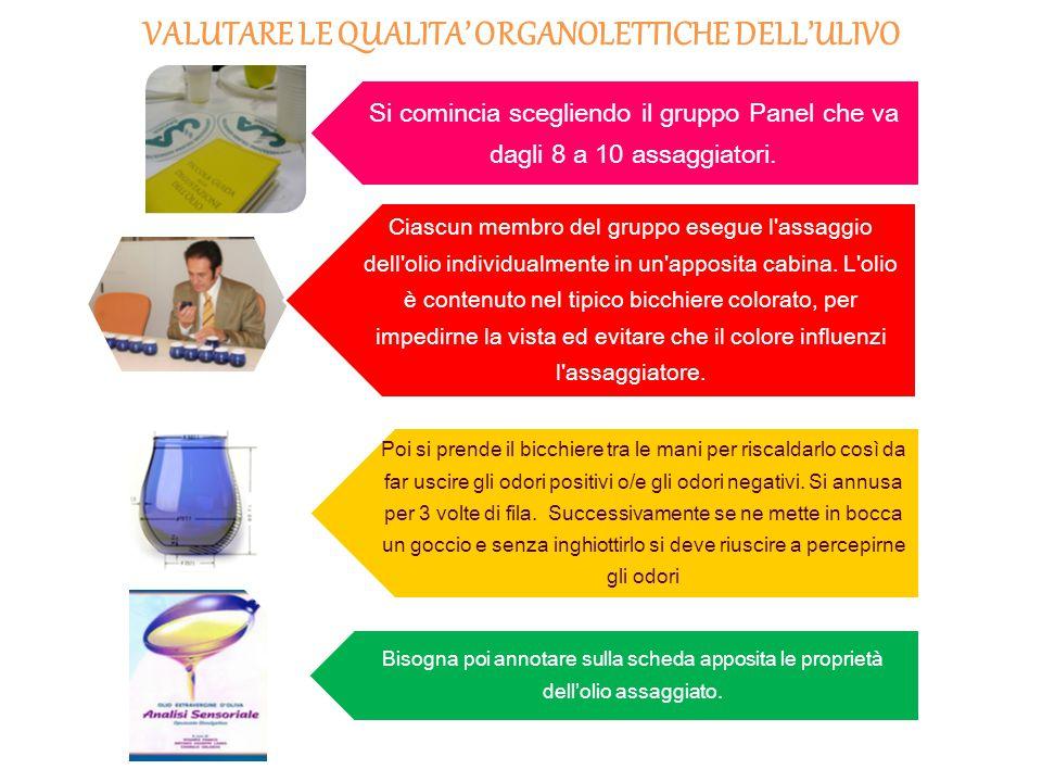 1° QUALITÀ COLORE: giallo, arancio/rosso o verde AROMA: profumo/odore SAPORE:gusto FLAVOR: sapore o aroma 2° ANALISI CHIMICA ACIDITÀ: l'essere aspro del prodotto NUMERO DI PEROSSIDI: analisi per determinare il numero di perossidi all'interno dell'olio (PEROSSIDI = unione di ossigeno e acidi grassi.