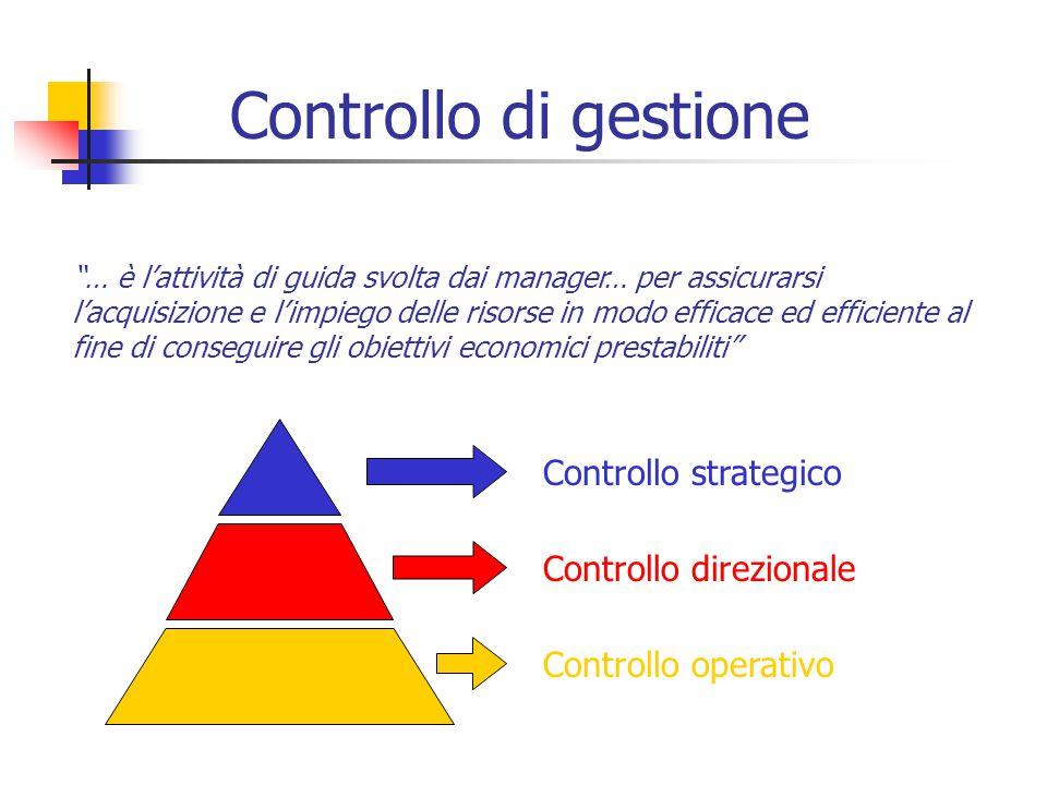 Controllo di gestione … è l'attività di guida svolta dai manager… per assicurarsi l'acquisizione e l'impiego delle risorse in modo efficace ed efficiente al fine di conseguire gli obiettivi economici prestabiliti Controllo strategico Controllo direzionale Controllo operativo