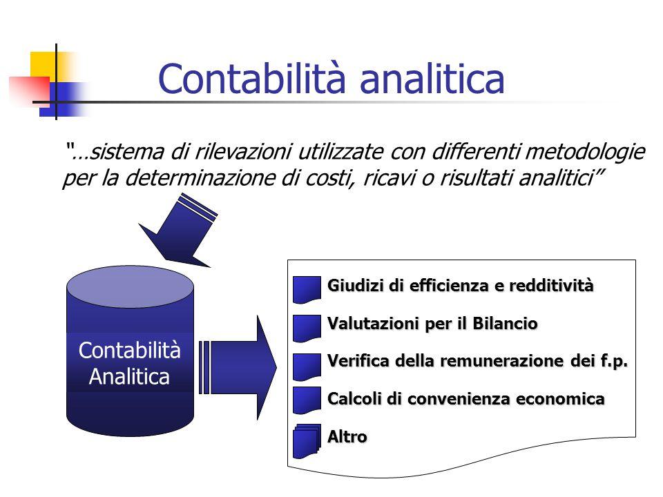 """""""…sistema di rilevazioni utilizzate con differenti metodologie per la determinazione di costi, ricavi o risultati analitici"""" Contabilità Analitica Giu"""