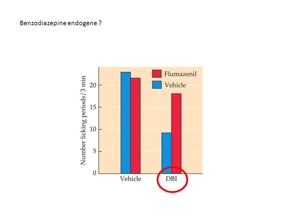 Benzodiazepine endogene ?