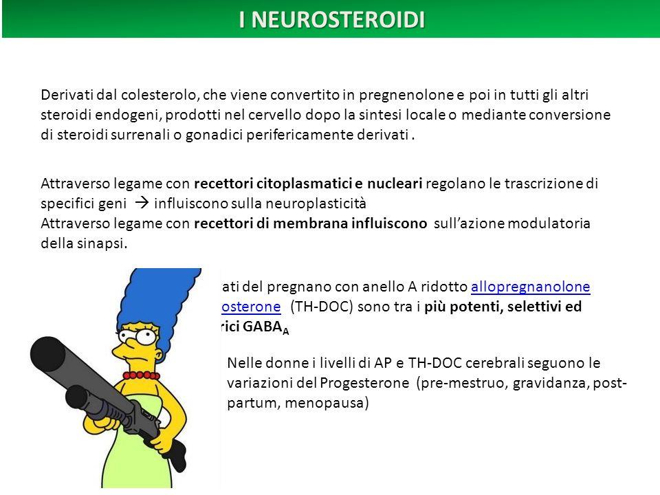 I NEUROSTEROIDI Derivati dal colesterolo, che viene convertito in pregnenolone e poi in tutti gli altri steroidi endogeni, prodotti nel cervello dopo la sintesi locale o mediante conversione di steroidi surrenali o gonadici perifericamente derivati .