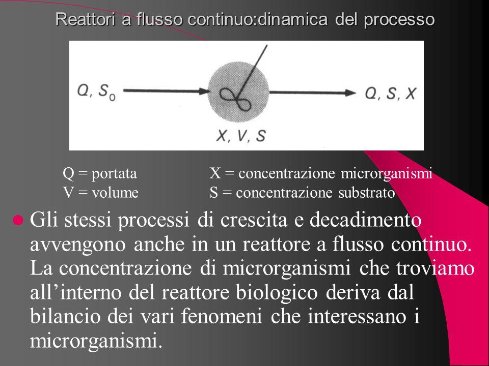 Reattori a flusso continuo:dinamica del processo Gli stessi processi di crescita e decadimento avvengono anche in un reattore a flusso continuo. La co