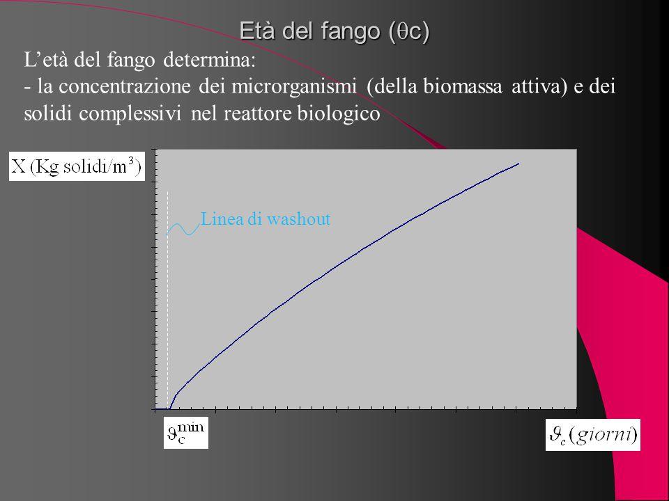Età del fango (  c) L'età del fango determina: - la concentrazione dei microrganismi (della biomassa attiva) e dei solidi complessivi nel reattore bi
