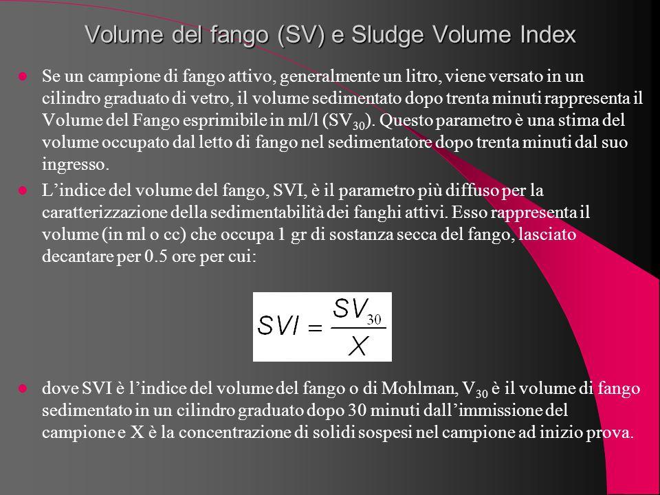 Volume del fango (SV) e Sludge Volume Index Se un campione di fango attivo, generalmente un litro, viene versato in un cilindro graduato di vetro, il