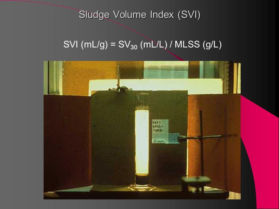 Sludge Volume Index (SVI) SVI (mL/g) = SV 30 (mL/L) / MLSS (g/L)