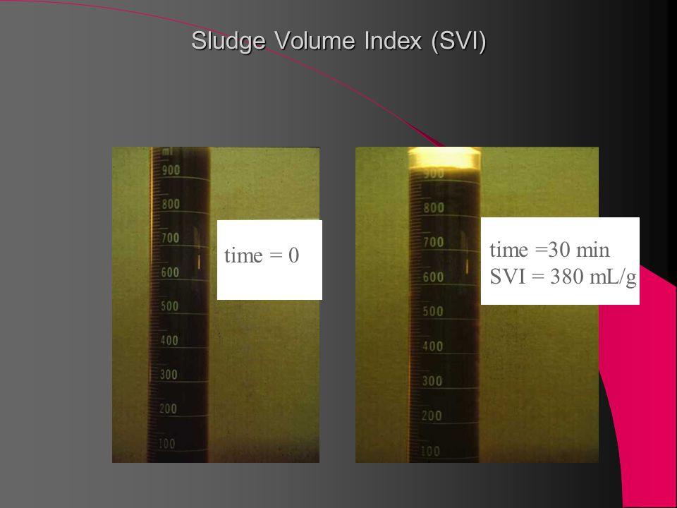 time =30 min SVI = 380 mL/g time = 0e Sludge Volume Index (SVI)