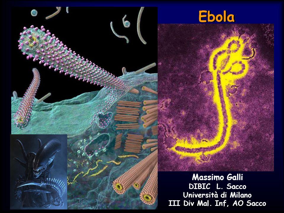 Ebola Massimo Galli DIBIC L. Sacco Università di Milano III Div Mal. Inf, AO Sacco
