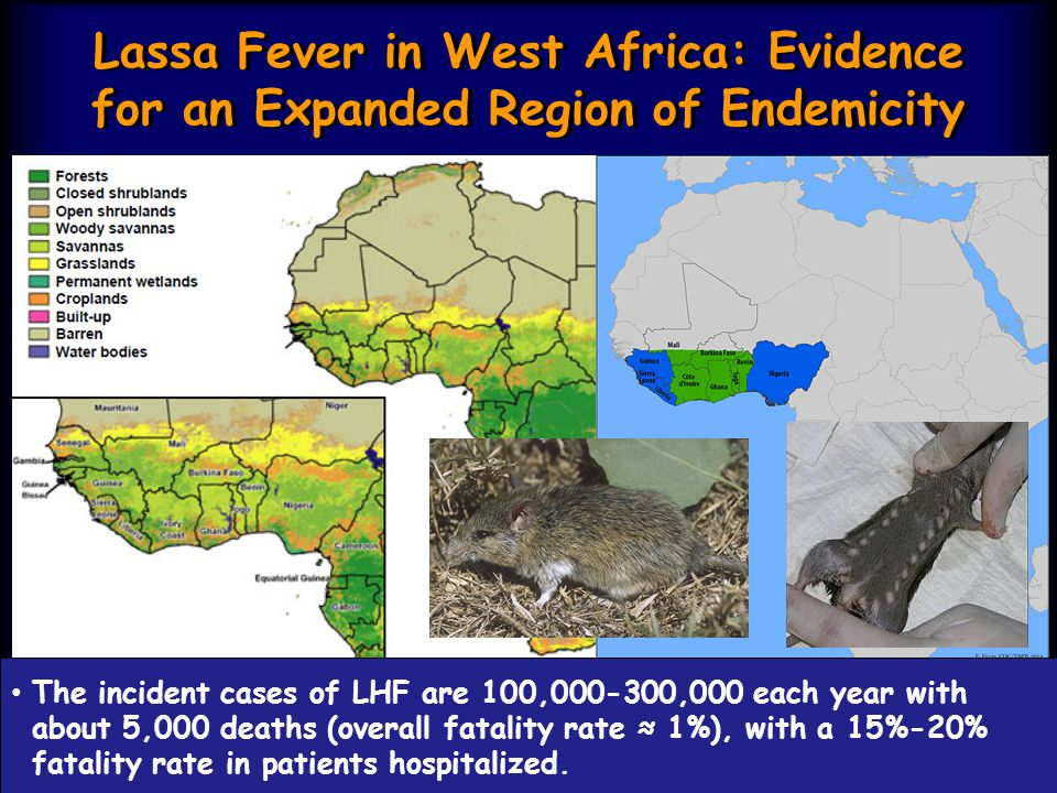 Lassa Fever in West Africa: Evidence for an Expanded Region of Endemicity Lassa fever is a public health problem in Sierra Leone/ Guinea/ Liberia (the Mano River region) and Nigeria.