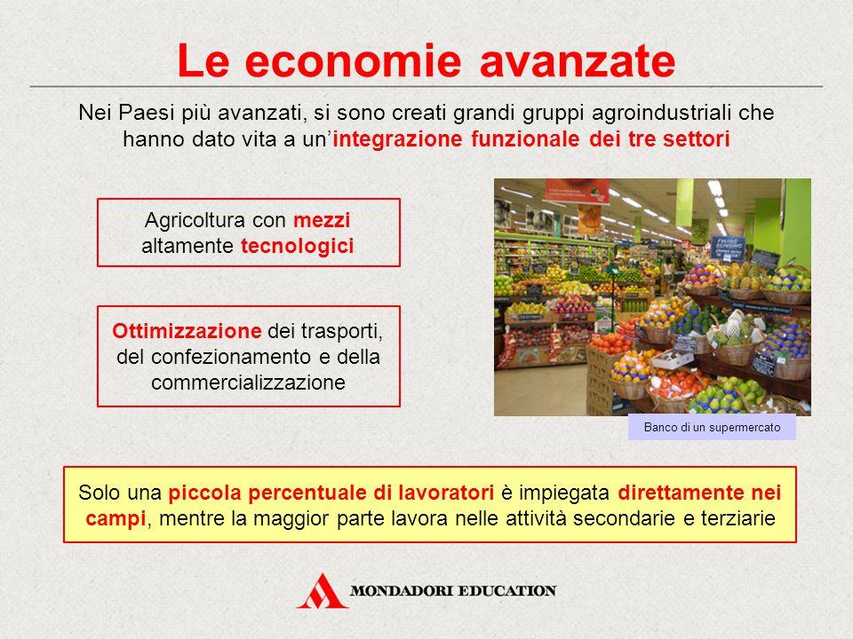 Le economie avanzate Nei Paesi più avanzati, si sono creati grandi gruppi agroindustriali che hanno dato vita a un'integrazione funzionale dei tre set