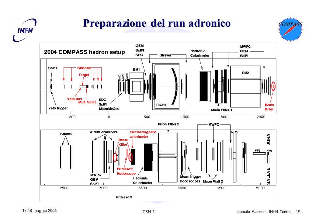 CSN 1 Daniele Panzieri – INFN Torino - 19 - 17-18 maggio 2004 Preparazione del run adronico