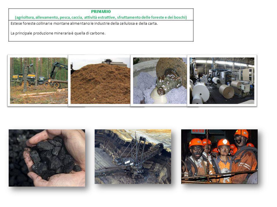 PRIMARIO (agrioltura, allevamento, pesca, caccia, attività estrattive, sfruttamento delle foreste e dei boschi) Estese foreste collinari e montane ali