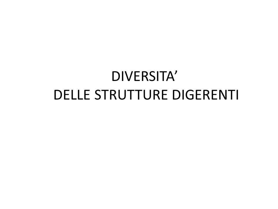 DIVERSITA' DELLE STRUTTURE DIGERENTI