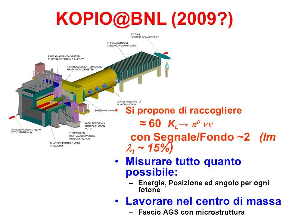 KOPIO@BNL (2009 ) Si propone di raccogliere ≈ 60 K L →    con Segnale/Fondo ~2 (Im t ~ 15%) Misurare tutto quanto possibile: –Energia, Posizione ed angolo per ogni fotone Lavorare nel centro di massa –Fascio AGS con microstruttura –Uso del tempo dI volo per misurare l'impulso del K L Inizio costruzione nel 2005.