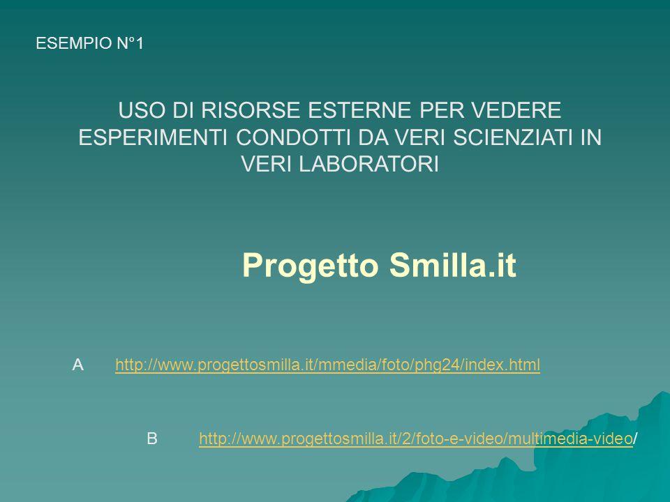 http://www.progettosmilla.it/mmedia/foto/phg24/index.html http://www.progettosmilla.it/2/foto-e-video/multimedia-videohttp://www.progettosmilla.it/2/foto-e-video/multimedia-video/ Progetto Smilla.it USO DI RISORSE ESTERNE PER VEDERE ESPERIMENTI CONDOTTI DA VERI SCIENZIATI IN VERI LABORATORI ESEMPIO N°1 A B