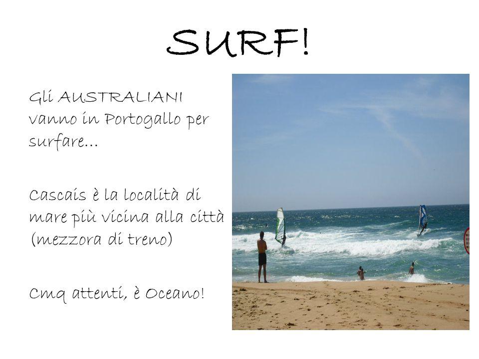SURF! Gli AUSTRALIANI vanno in Portogallo per surfare… Cascais è la località di mare più vicina alla città (mezzora di treno) Cmq attenti, è Oceano!