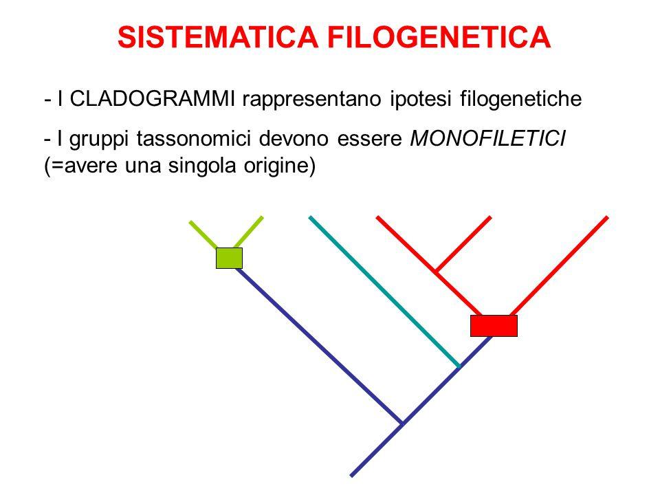 SISTEMATICA FILOGENETICA - I CLADOGRAMMI rappresentano ipotesi filogenetiche - I gruppi tassonomici devono essere MONOFILETICI (=avere una singola origine)