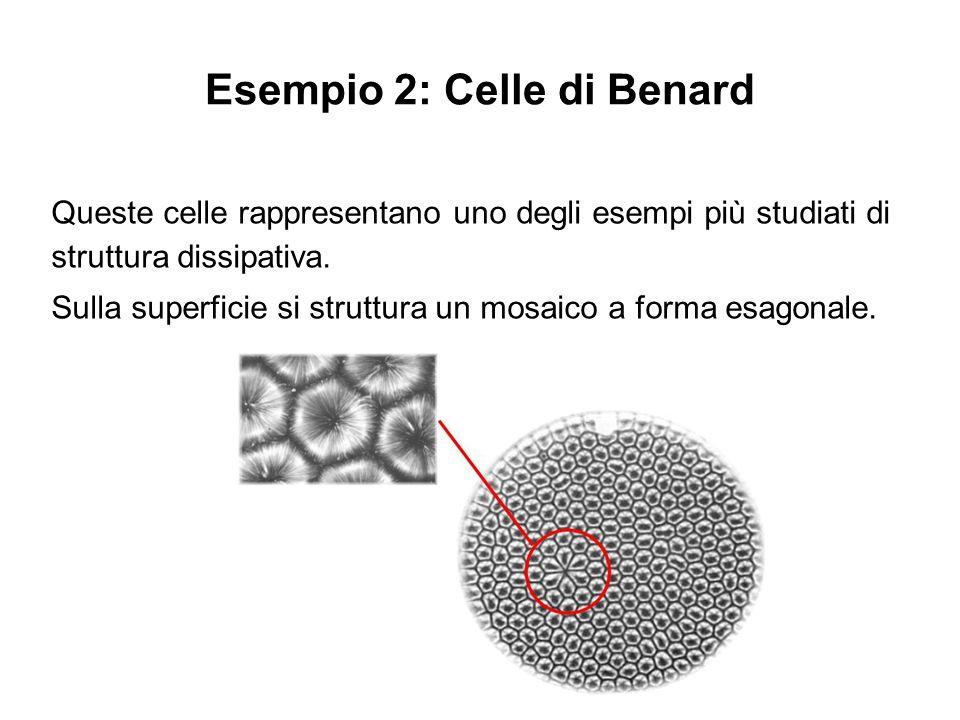 Esempio 2: Celle di Benard Queste celle rappresentano uno degli esempi più studiati di struttura dissipativa. Sulla superficie si struttura un mosaico