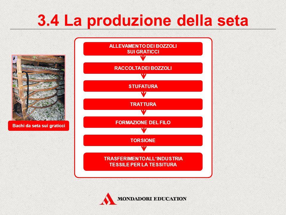 3.3 Le fibre di origine animale LA SETA PROPRIETÀ FISICHE lucentezza igrocopicità coibenza termica PROPRIETÀ MECCANICHE elasticità resistenza a trazio