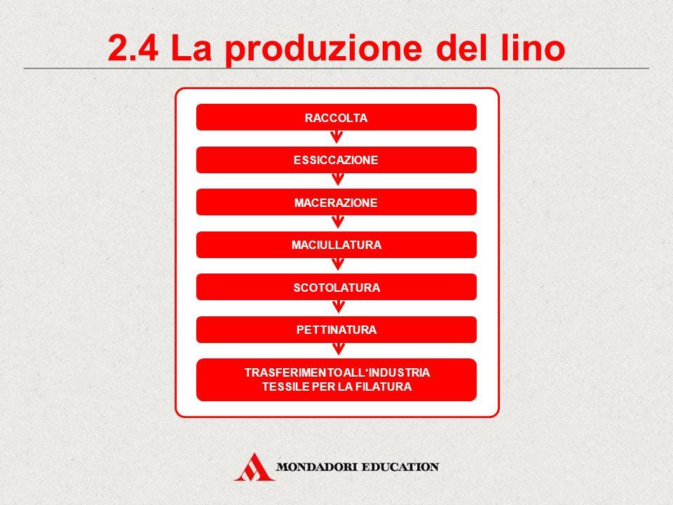 2.4 La produzione del lino RACCOLTA ESSICCAZIONE MACERAZIONE TRASFERIMENTO ALL'INDUSTRIA TESSILE PER LA FILATURA MACIULLATURA SCOTOLATURA PETTINATURA