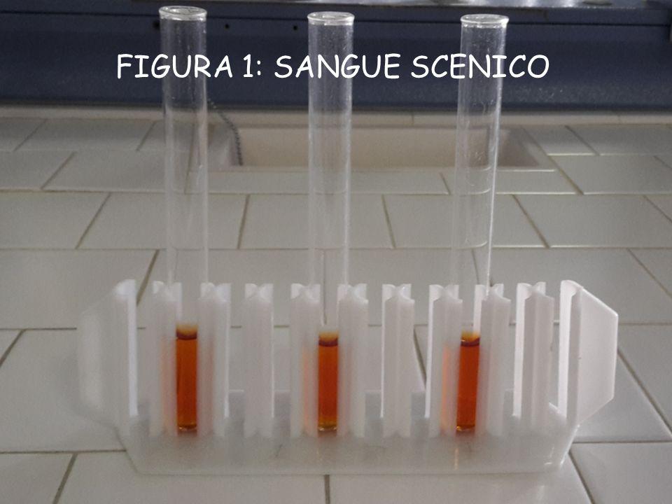 FASE 2 PROCEDIMENTO: Abbiamo inserito nella seconda provetta un punta di spatola di nitrato ferrico puro, allo stato solido.