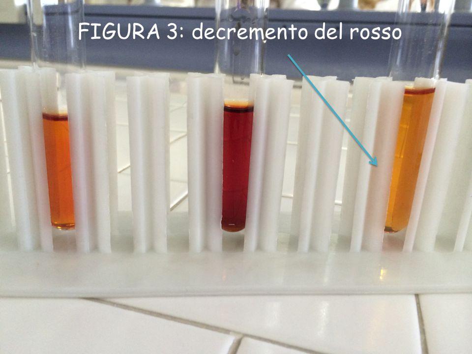 CONCLUSIONI Per prima cosa abbiamo verificato che in una reazione non a completezza tutte le specie chimiche coesistono.