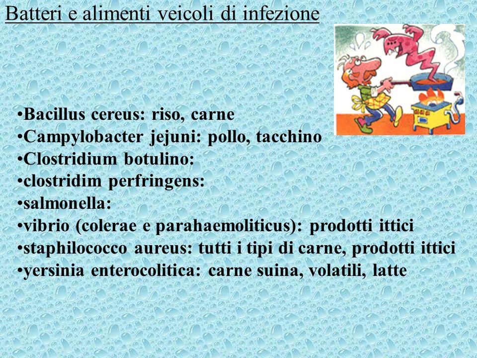 Batteri e alimenti veicoli di infezione Bacillus cereus: riso, carne Campylobacter jejuni: pollo, tacchino Clostridium botulino: clostridim perfringen
