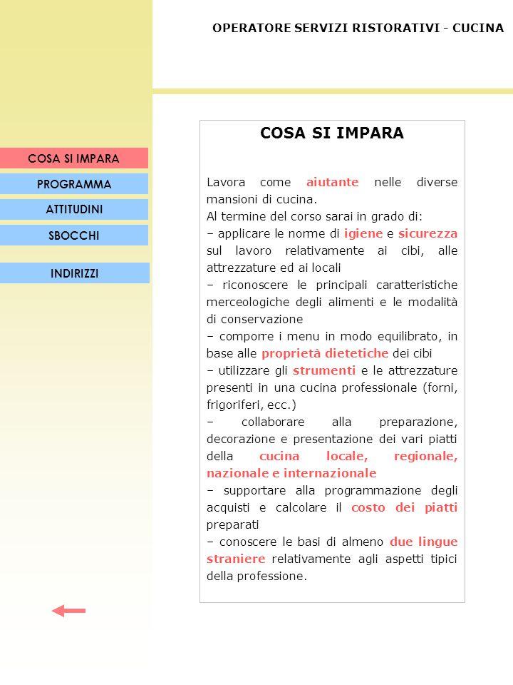 PROGRAMMA Argomenti: Materie professionalizzanti.