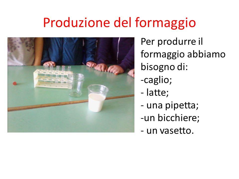 Produzione del formaggio Per produrre il formaggio abbiamo bisogno di: -caglio; - latte; - una pipetta; -un bicchiere; - un vasetto.