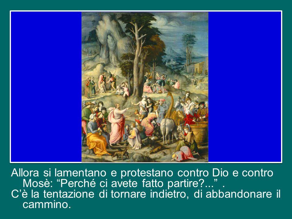 Ritorniamo al racconto biblico. A un certo punto «il popolo non sopportò il viaggio» (Nm 21,4).