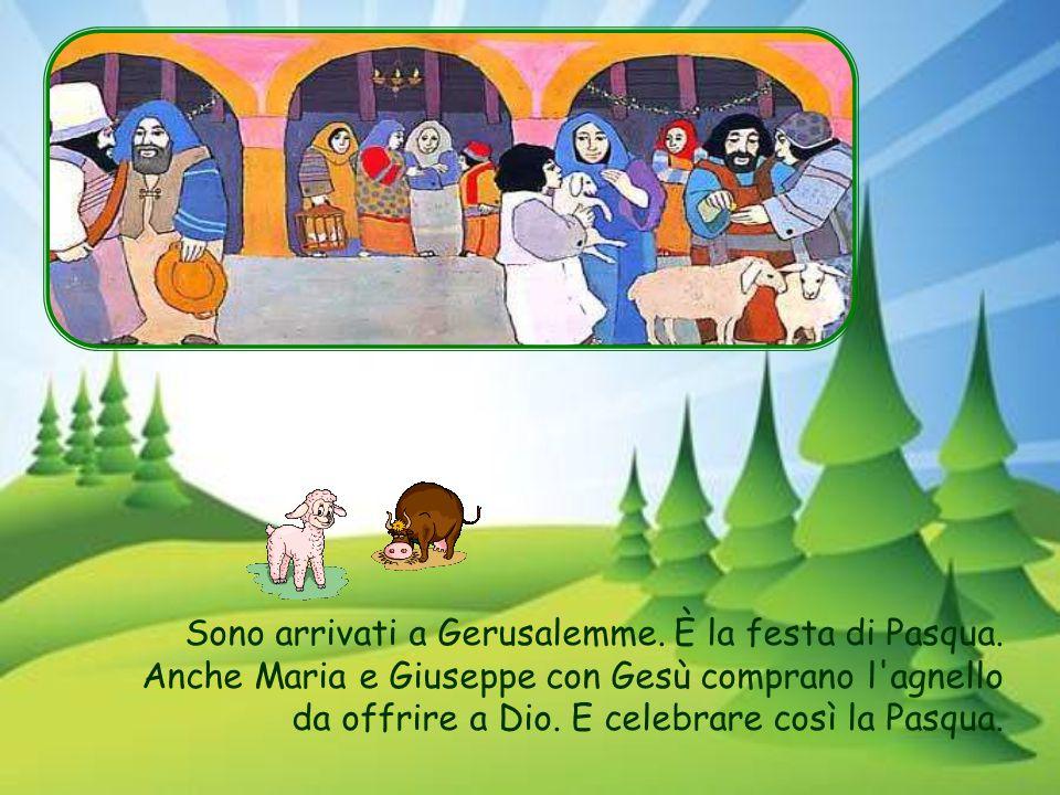 Ogni anno, Maria e Giuseppe vanno in pellegrinaggio a Gerusalemme, per la festa di Pasqua. Ora che Gesù ha dodici anni, può partecipare anche lui per