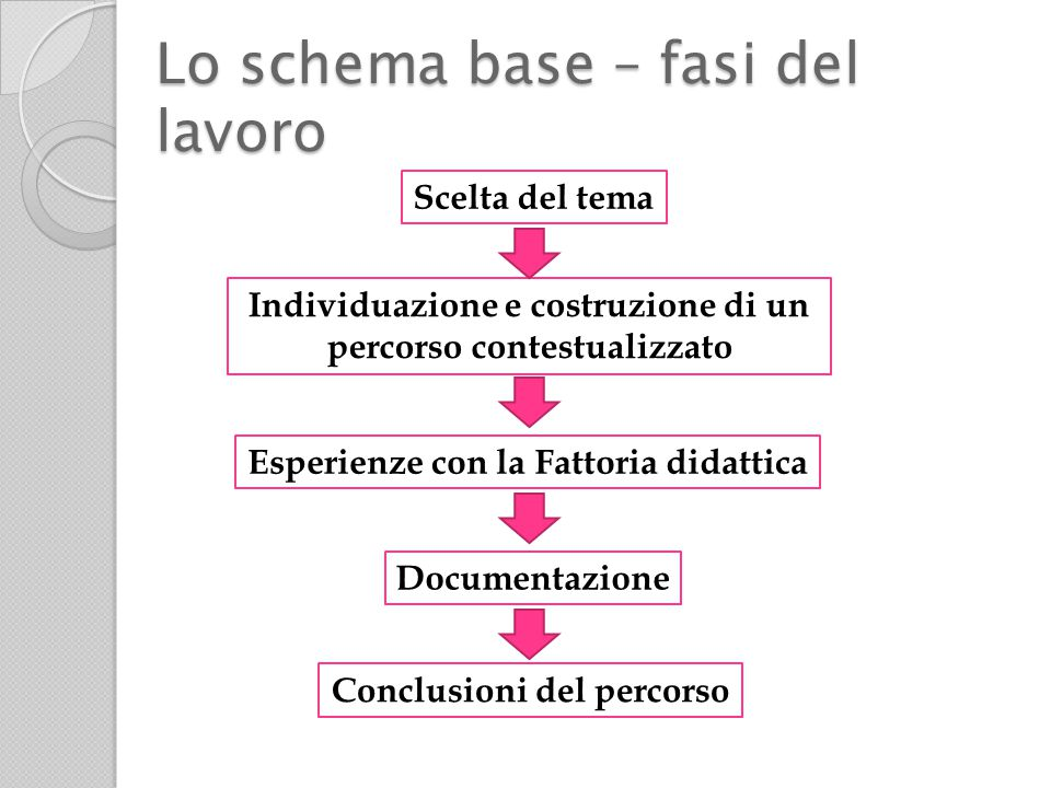 Scelta del tema Individuazione e costruzione di un percorso contestualizzato Conclusioni del percorso Esperienze con la Fattoria didattica Documentazione Lo schema base – fasi del lavoro