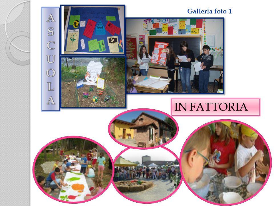 Galleria foto 1 IN FATTORIA