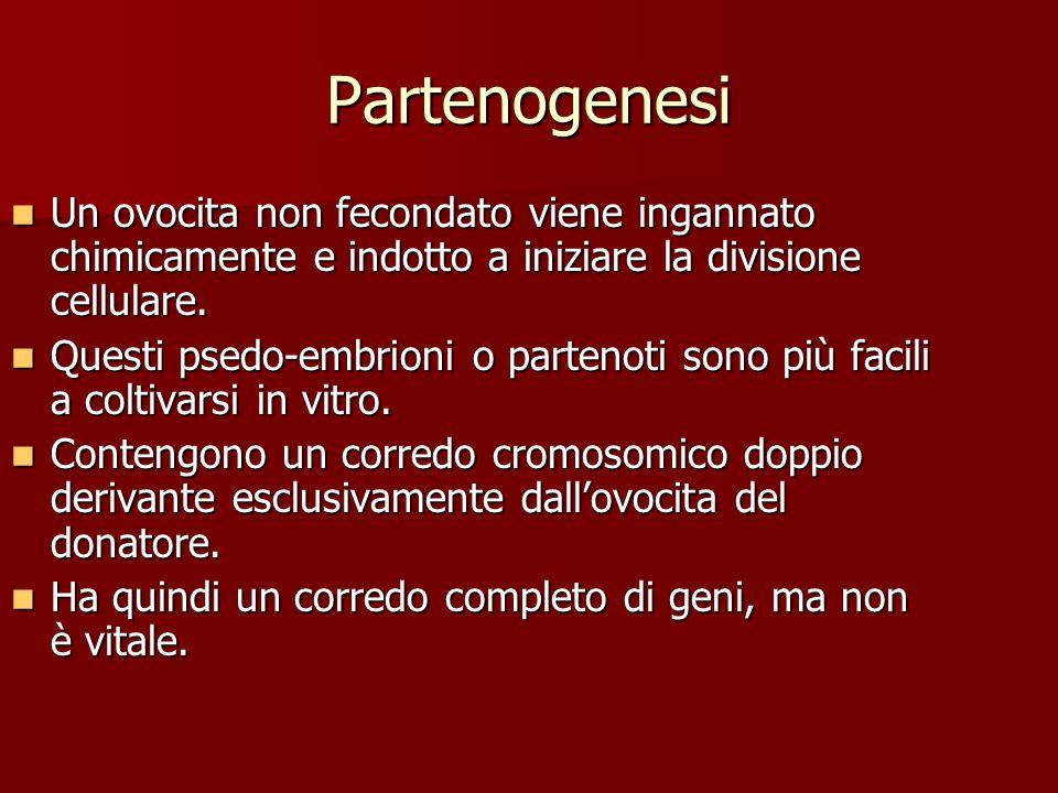 Partenogenesi Un ovocita non fecondato viene ingannato chimicamente e indotto a iniziare la divisione cellulare. Un ovocita non fecondato viene ingann