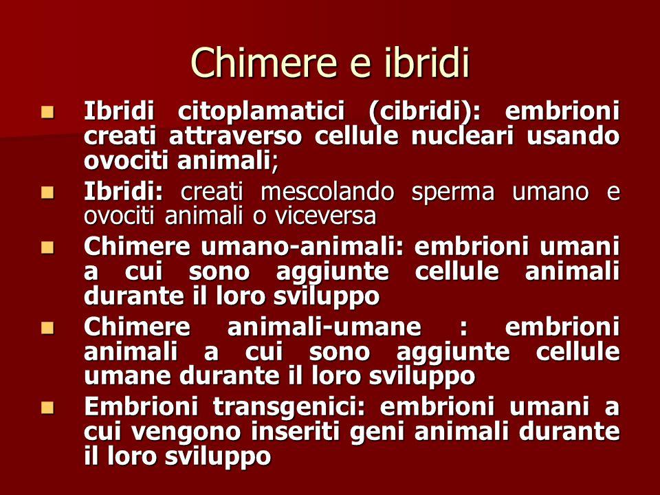 Chimere e ibridi Ibridi citoplamatici (cibridi): embrioni creati attraverso cellule nucleari usando ovociti animali; Ibridi citoplamatici (cibridi): e