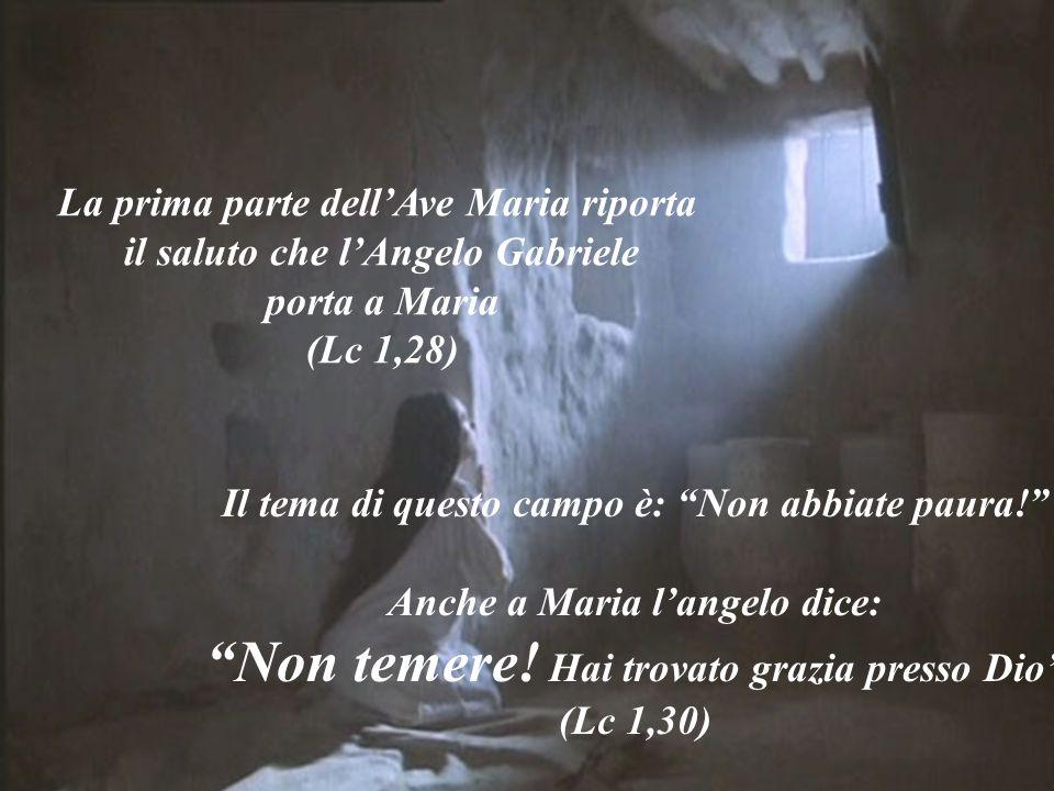 """La prima parte dell'Ave Maria riporta il saluto che l'Angelo Gabriele porta a Maria (Lc 1,28) Il tema di questo campo è: """"Non abbiate paura!"""" Anche a"""