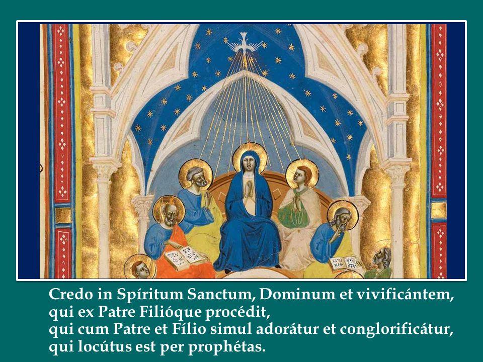 Credo in Spíritum Sanctum, Dominum et vivificántem, qui ex Patre Filióque procédit, qui cum Patre et Fílio simul adorátur et conglorificátur, qui locútus est per prophétas.