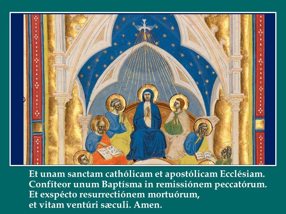 Papa Francesco ha dedicato l'Udienza Generale di mercoledì 1 ottobre 2014 in Piazza San Pietro La Chiesa – Carismi: diversità e unità Papa Francesco h