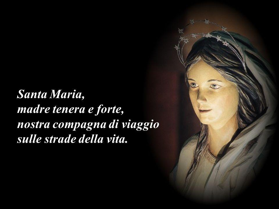 Santa Maria, compagna di viaggio, vergine del mattino, vergine del meriggio, vergine della sera.