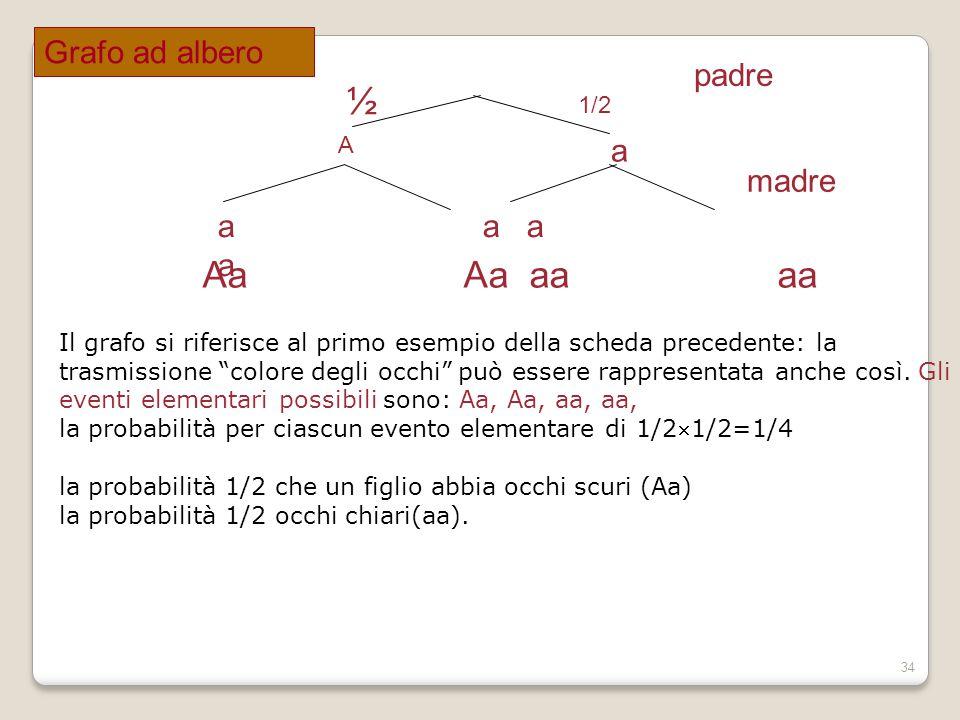 34 padre A a ½ 1/2 a a madre Aa Aa aa aa Il grafo si riferisce al primo esempio della scheda precedente: la trasmissione colore degli occhi può essere rappresentata anche così.