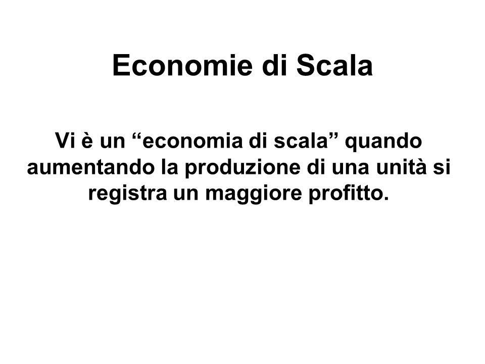 """Economie di Scala Vi è un """"economia di scala"""" quando aumentando la produzione di una unità si registra un maggiore profitto."""