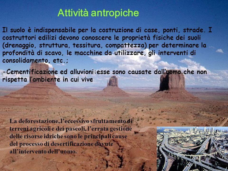 Il suolo è indispensabile per la costruzione di case, ponti, strade.
