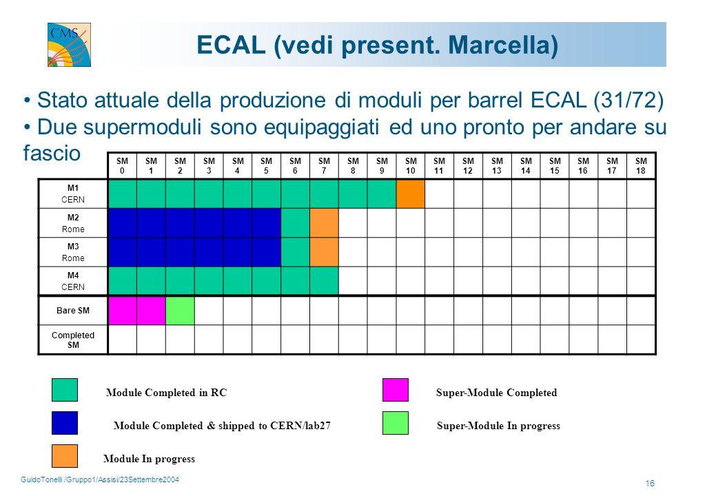 GuidoTonelli /Gruppo1/Assisi/23Settembre2004 16 ECAL (vedi present.