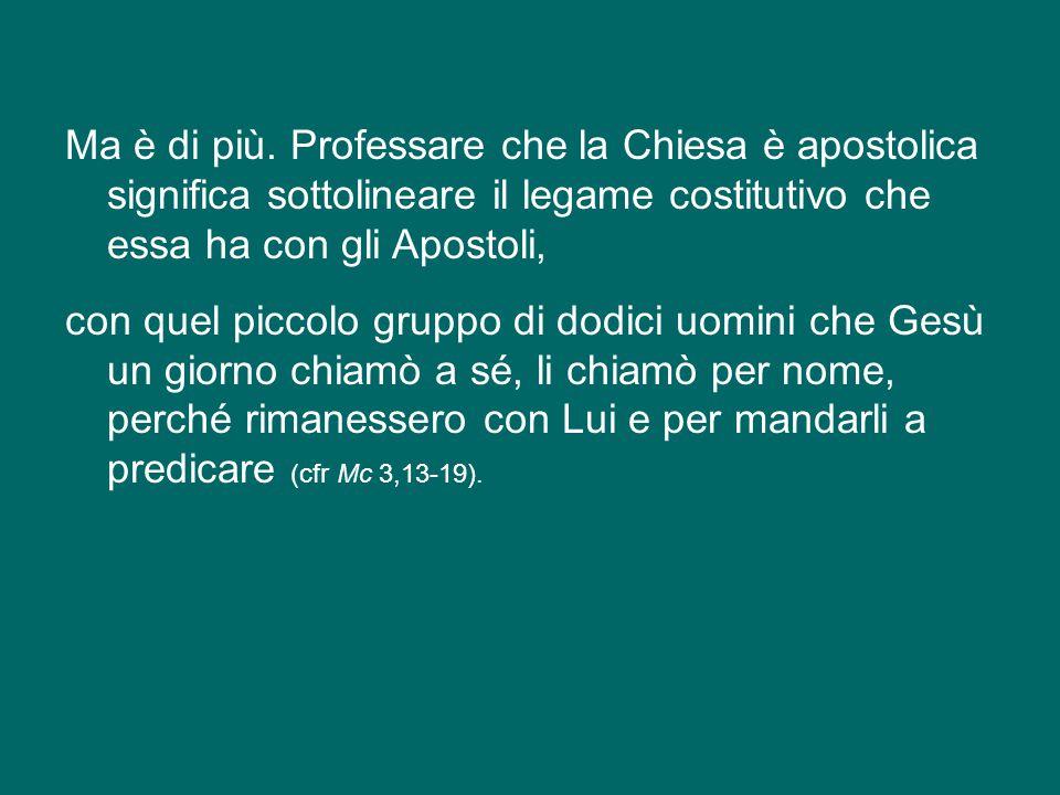 Forse qualche volta, venendo a Roma, avete pensato all'importanza degli Apostoli Pietro e Paolo che qui hanno donato la loro vita per portare e testim