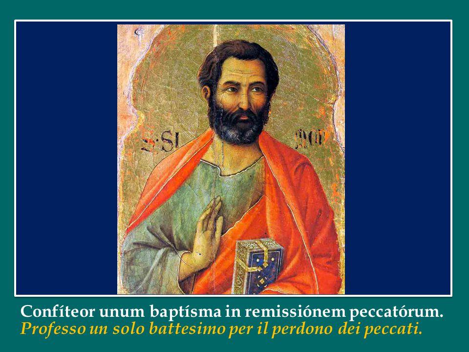 Papa Francesco ha dedicato l'Udienza Generale di mercoledì 16 ottobre 2013 in Piazza San Pietro alla Chiesa Apostolica Papa Francesco ha dedicato l'Ud