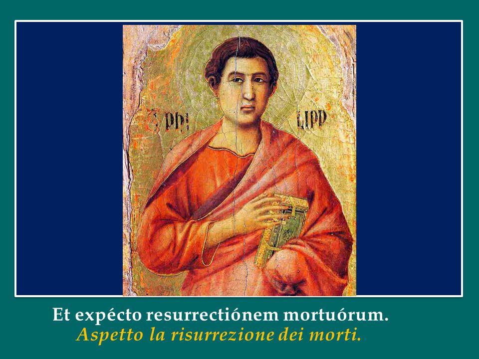 Et expécto resurrectiónem mortuórum. Aspetto la risurrezione dei morti.